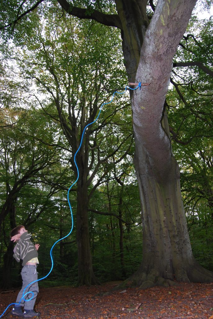 throwing a rope into the tree