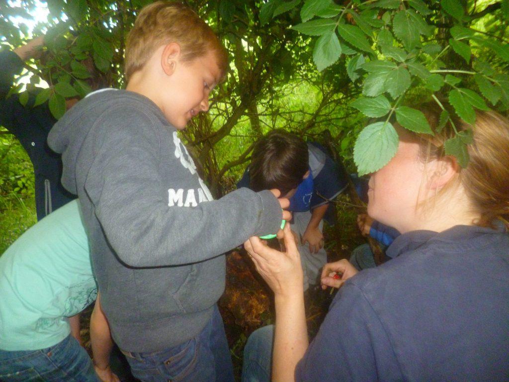 forest school pupi;